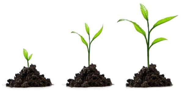 Ключевые метрики для SaaS-сервисов навсе этапы развития