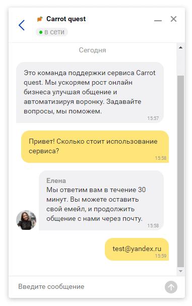 вид чата Яндекс.Диалог для пользователя