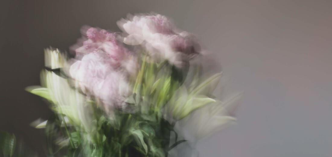 Цветочный тест: накого подписаться этой весной