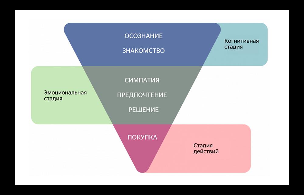 Когнитивная, эмоциональная стадия и стадия действий